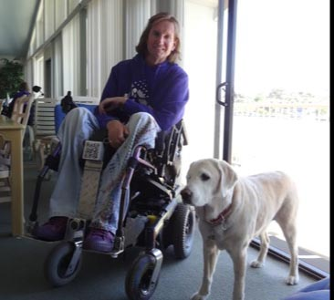 'Paws and Wheels' became artist's inspiration