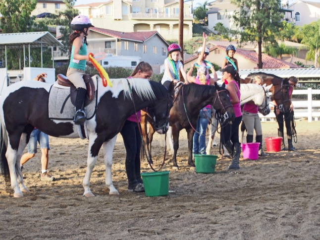 Kids have fun learning with horses