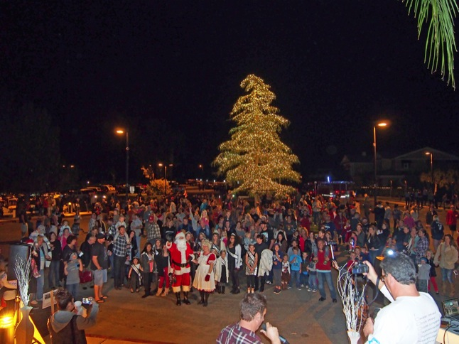 Family Winterfest and Tree-Lighting draws a crowd