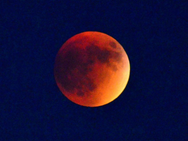 Skywatchers enjoyed supermoon eclipse