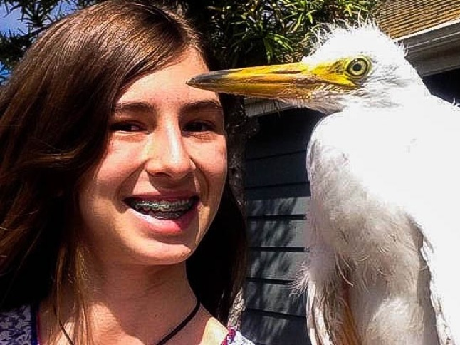 Unsung Heroes: Evans sisters are avian rescuers